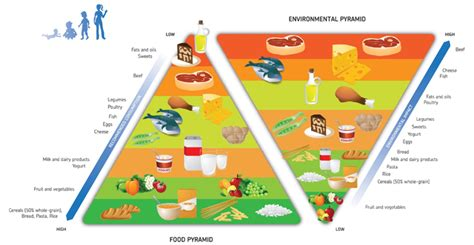 piramide alimentare barilla healthy diet healthier planet