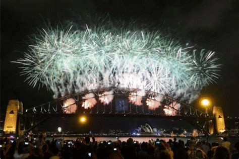 new year animals sydney sydney harbour bridge fireworks 9to5animations