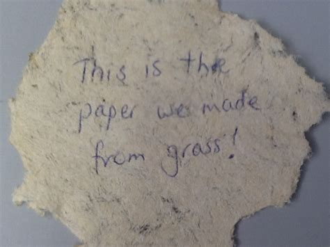 Paper From Grass - paper from grass technoscience