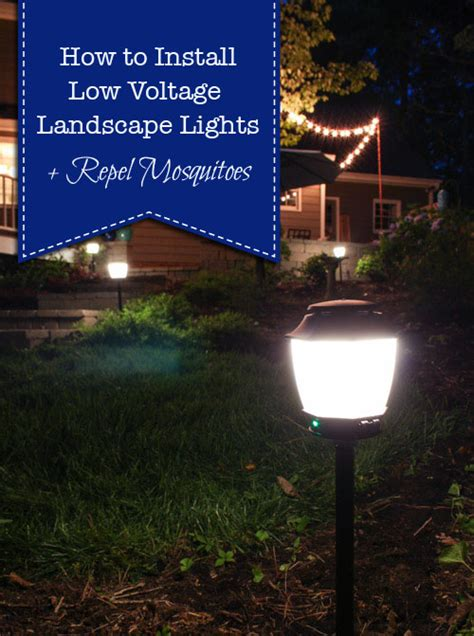 How To Install Landscape Lighting how to install landscape lights and repel mosquitoes