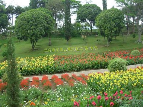 Rahasia Taman Bunga Serial Cantik 8 taman bunga indonesia yang tak kalah cantik dari taman bunga eropa berjalanjalan