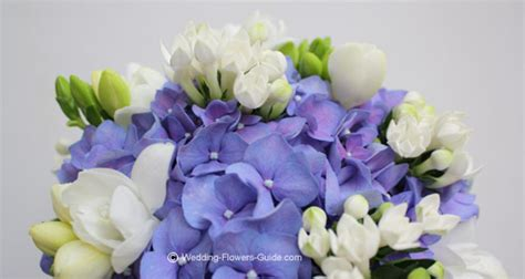 Wedding Bouquets Using Blue Hydrangeas by Blue Wedding Bouquets Ideas And Inspiration