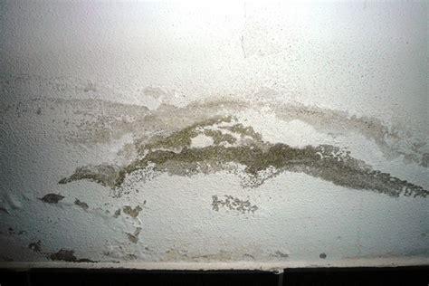 come risolvere il problema dell umidit in casa isolportale il portale dell isolamento termico ed