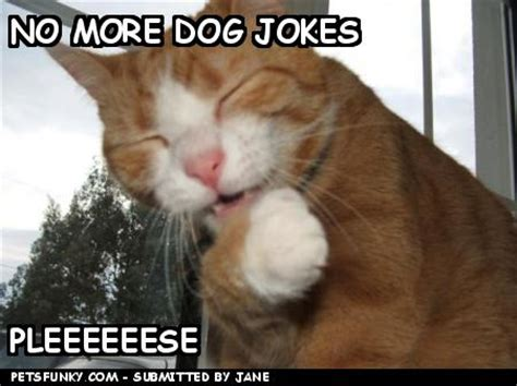 puppy puns jokes amazing wallpapers