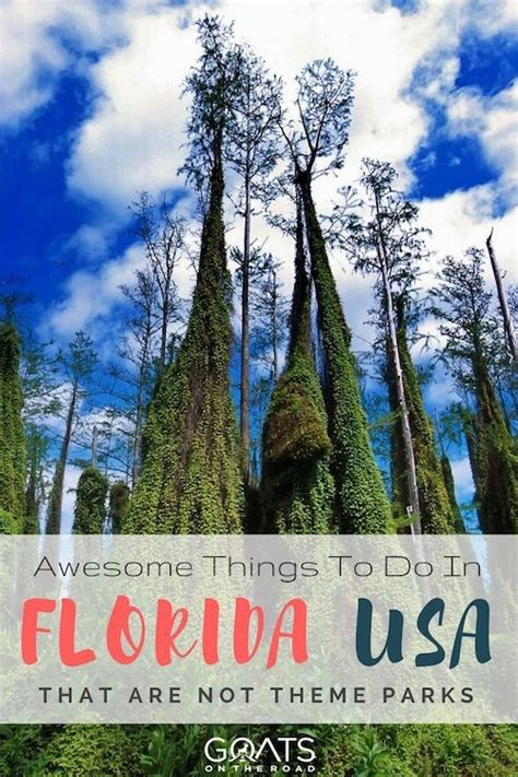 theme park list usa 5396 best our type of traveler images on pinterest