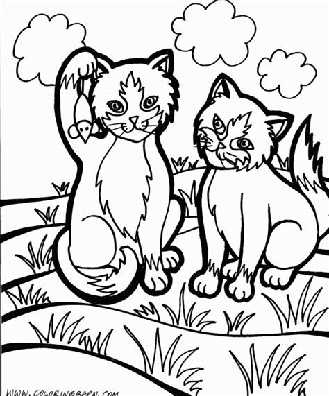 wildcat coloring pages az coloring pages