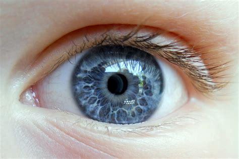 Jennifer Murch Eyeballs And Teeth Eyeball Pics