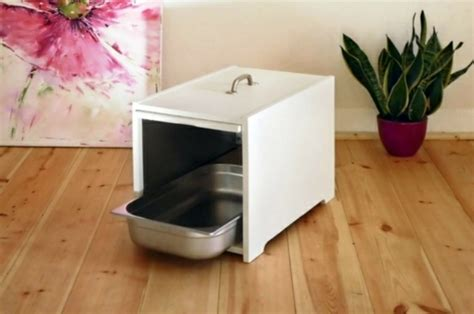 litter box in bedroom feng shui advice find the best place for the litter box