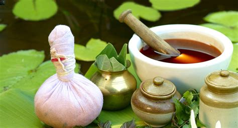 Ayurvedic Detox Retreat by Ayurveda Detox Retreat Oneworld Retreats
