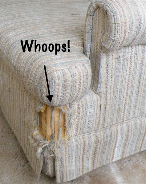how to keep cats from scratching furniture smart