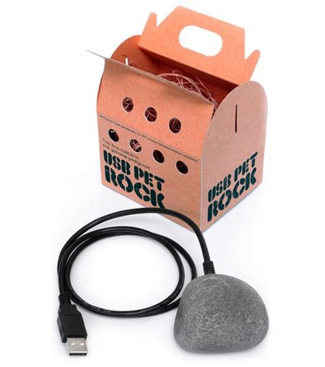 pet gadgets usb gadgets the usb pet rock