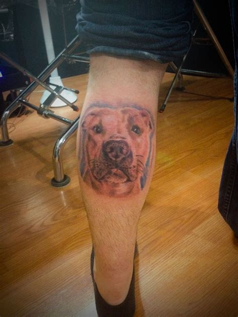 tattoos of pitbulls pitbull tattoos pitbull tattoos