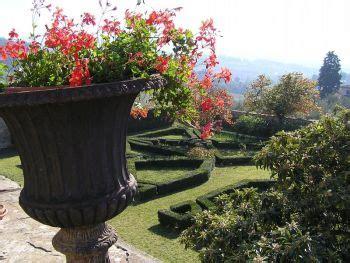 tuscan garden plants