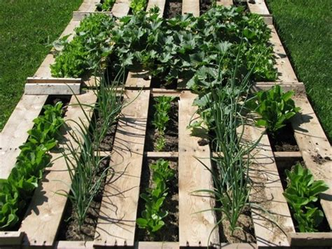 Vegetable Garden In Pallet Refresh Your And Mind With Pallet Vegetable Garden