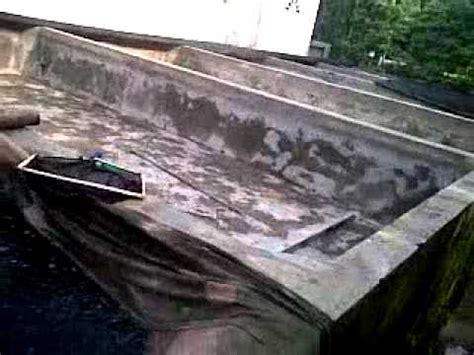 Bibit Lele Di Pare Kediri kota pare penghasil benih ikan lele terbesar indonesia