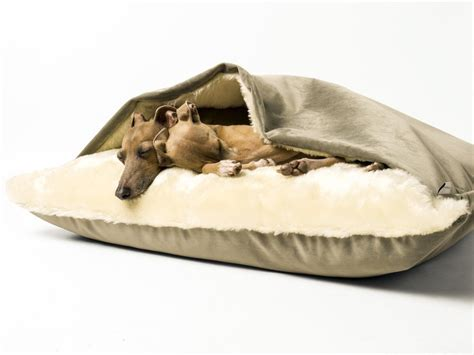 dog snuggle bed dog snuggle bed in velour charley chau luxury dog beds