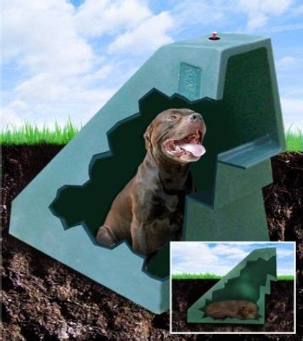 temperature controlled dog house quot this unique quot 21st century eco friendly quot underground dog house takes advantage of the