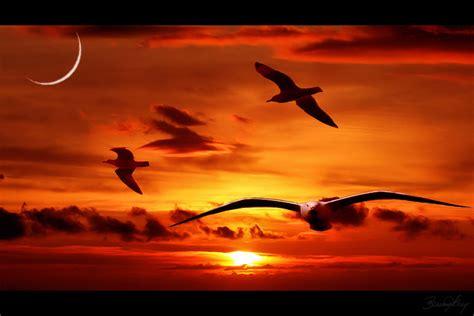 aixa s la vida amigos solid 193 rios na dor do luto agosto 2012