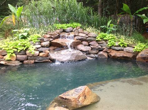 backyard swimming hole nature s swimming hole products services