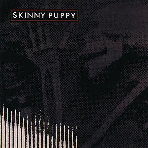 puppy albums puppy fanart fanart tv