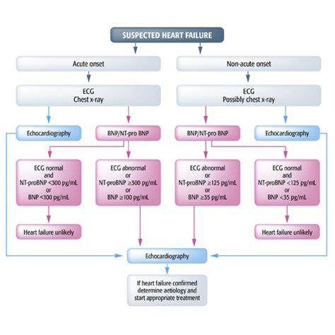 failure flowchart prognosis in failure galectin 3 in failure