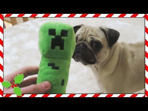 dantdm build battle pug pug ellie s 1st birthday moretdm funnycat tv