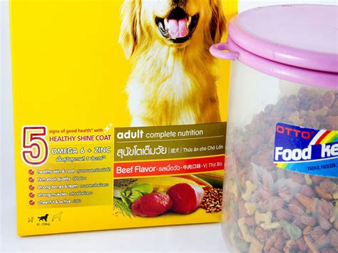 best food shih tzu best food for shih tzu with allergies 1001doggy