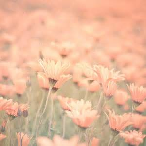 Flowers Out Of Paper - sweet memories pastel field of yellow flowers