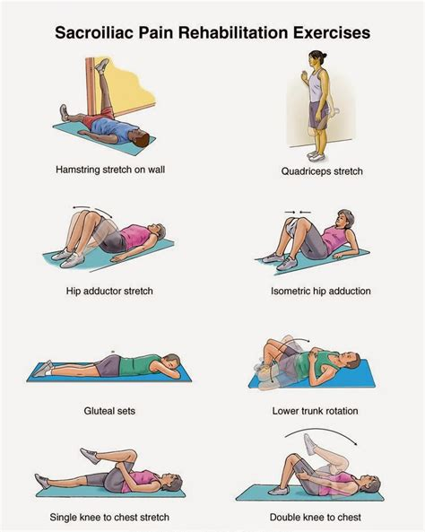 the amazing exercises low back exercises heal