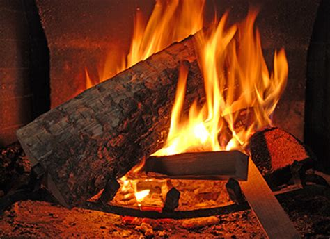 wood fireplaces vs wood stoves comparing wood heating units