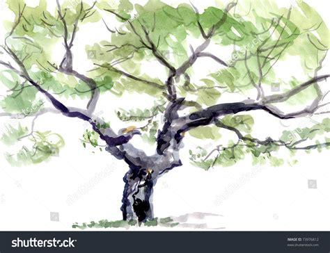 tree watercolor stock photo 73976812 shutterstock