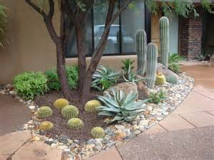 Arizona Backyard Landscaping Ideas Best 25 Arizona Landscaping Ideas On Desert Landscaping Backyard Desert Landscape