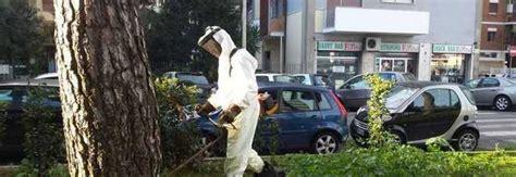 servizio giardini roma mafia capitale furto al servizio giardini spariti mezzi e