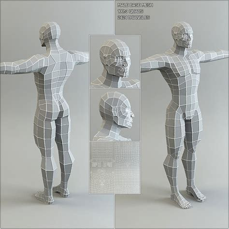 body templates for blender low poly base mesh male by bitgem 3docean