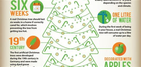 the history of christmas trees infographic only