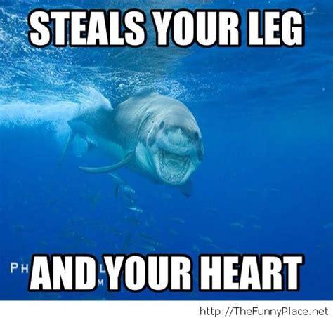 Funny Memes Pics - day 189 12 31 13 eerie smiling shark shark dreams