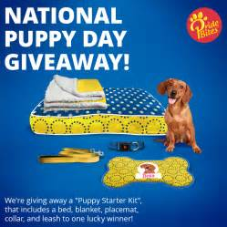 Free Puppy Giveaway - national puppy day giveaway smiling dog pet services