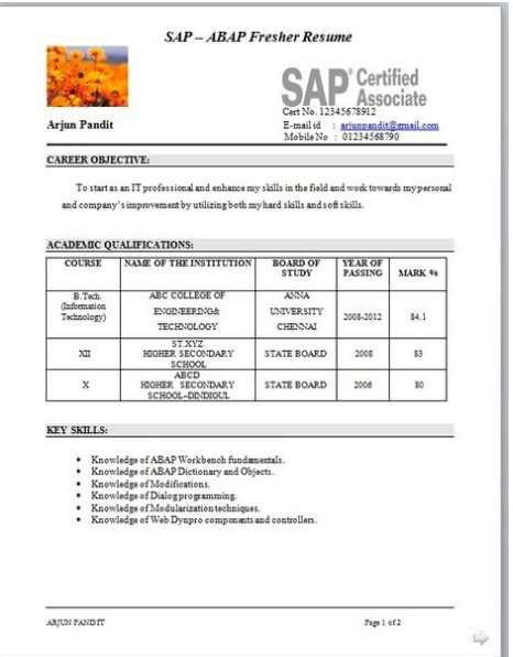 Mba Student Resume Model by Resume Models Mba Students 2018 2019 Studychacha