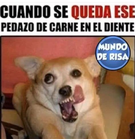 Memes En Espanol - memes chistes memes en espa 241 ol image 4513855 by loren