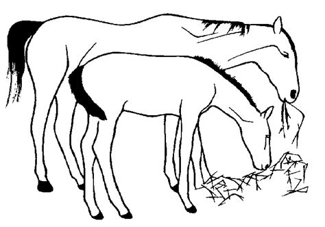 clipart mare mares and foals