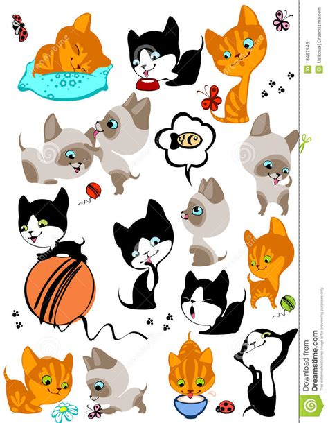 imagenes de gatitos alegres el conjunto completo de diversos gatitos alegres fotos de
