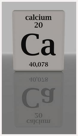 Pupuk Kalsium Untuk Tomat kalsium ca hidroponiq
