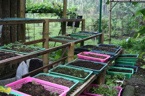 Garden Nursery by Plant Nursery The Jiwa Damai