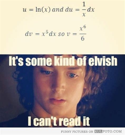 Kind Meme - math it s some kind of elvish frodo baggins from the