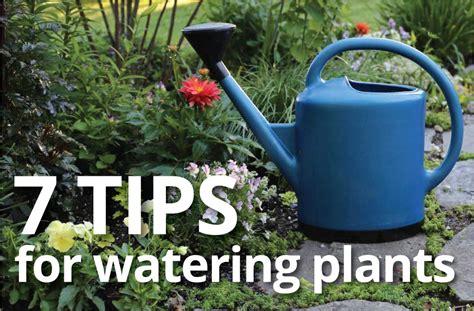 practices  watering plants longfield gardens