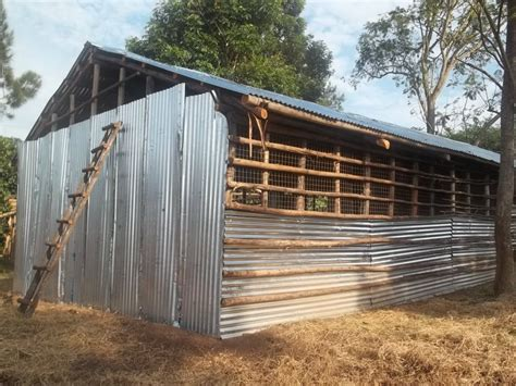 simple poultry house design simple poultry house in kenya with chicken house design and construction in kenya 6077