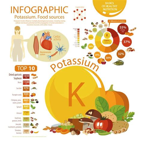 foods high in potassium for high potassium food list
