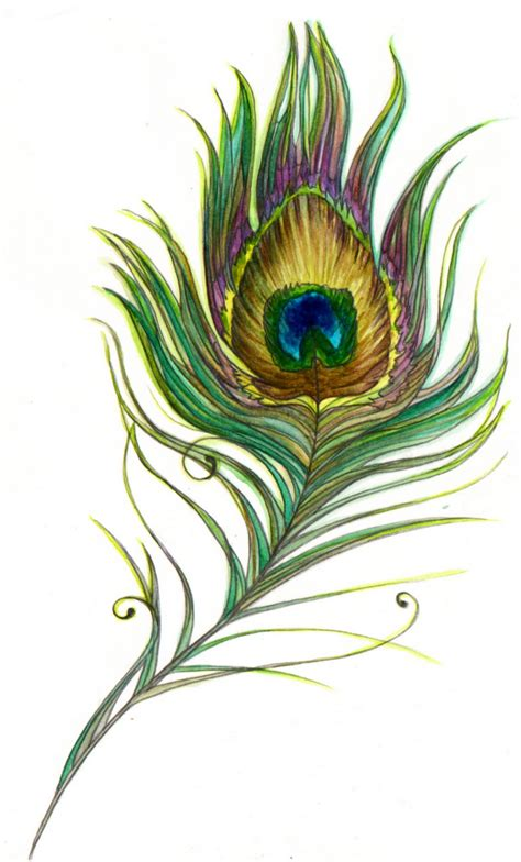 tattoo feather art peacock feather peacock pinterest peacock feathers