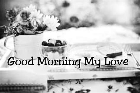 Morning Letter To My