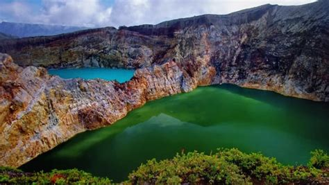 flores pink beach komodo tours package abbey travel